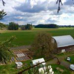 Sparrow Hawk Farm
