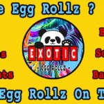 Exotic Egg Rollz