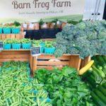 Barn Frog Farm