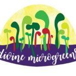Divine Microgreens