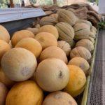 Maryhill Fruit Company