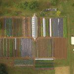 Shady Grove Farm